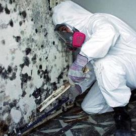Mold Worker Training