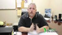 Green Training USA - Testimonial by Mike Hartman